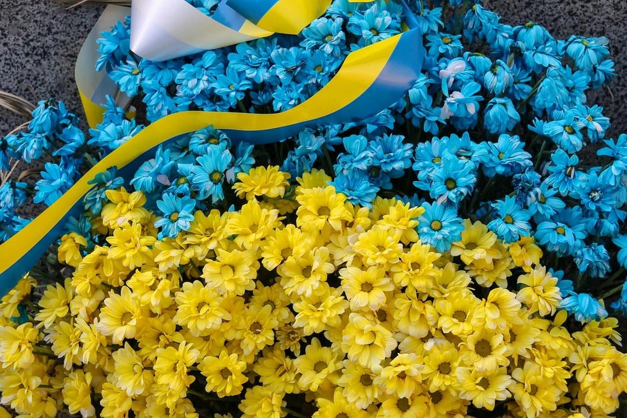 все цветущие комнатные цветы название фото