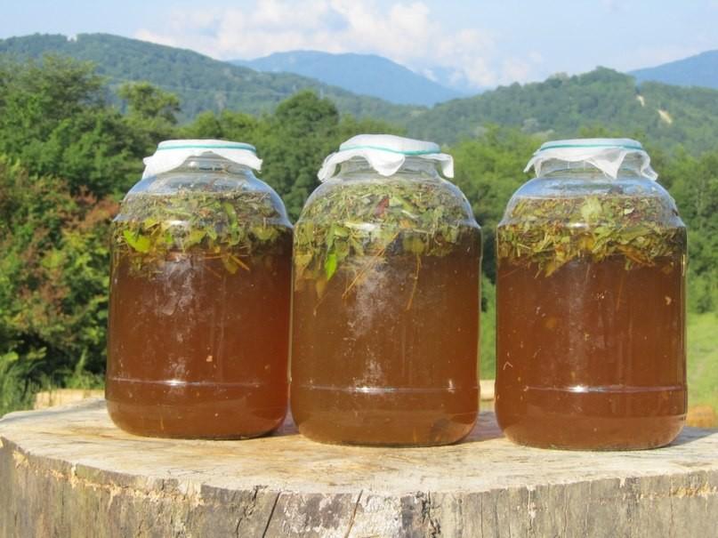 Сурица- солнечный напиток, который готовили наши предки!