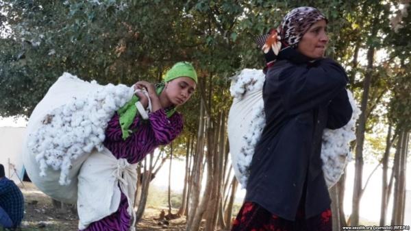 Доклад Госдепа: ВУзбекистане— принудительный труд исексуальная торговля