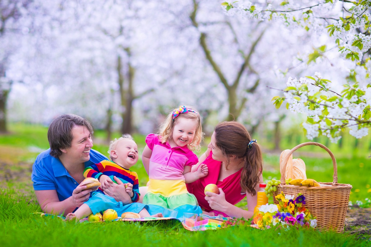 Young family with kids having picnic outdoors. Parents with two children relax in a blooming summer garden. Mother, father, little girl and baby boy eat sandwich and fruit, drink juice for healthy lunch in a park.