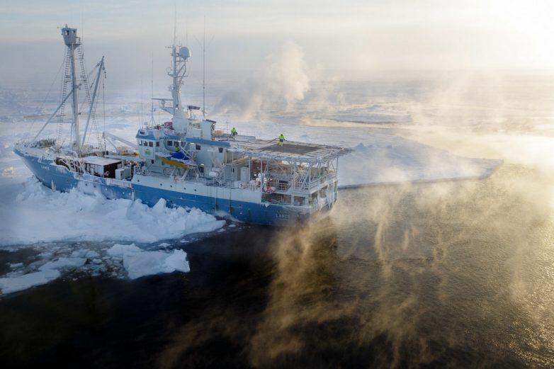 Арктика на фото