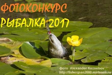 "ФОТОКОНКУРС ""РЫБАЛКА 2017(18)"""