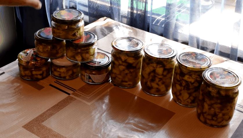 То ли грибы, то ли кабачки: вкусно, просто и доступно
