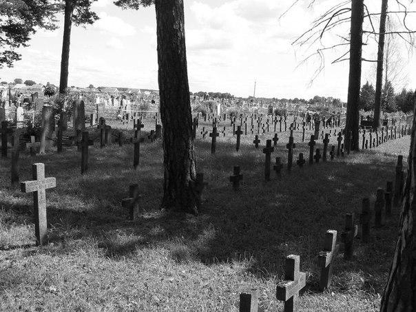 Призраки эсэсовского кладбища в Курляндском котле