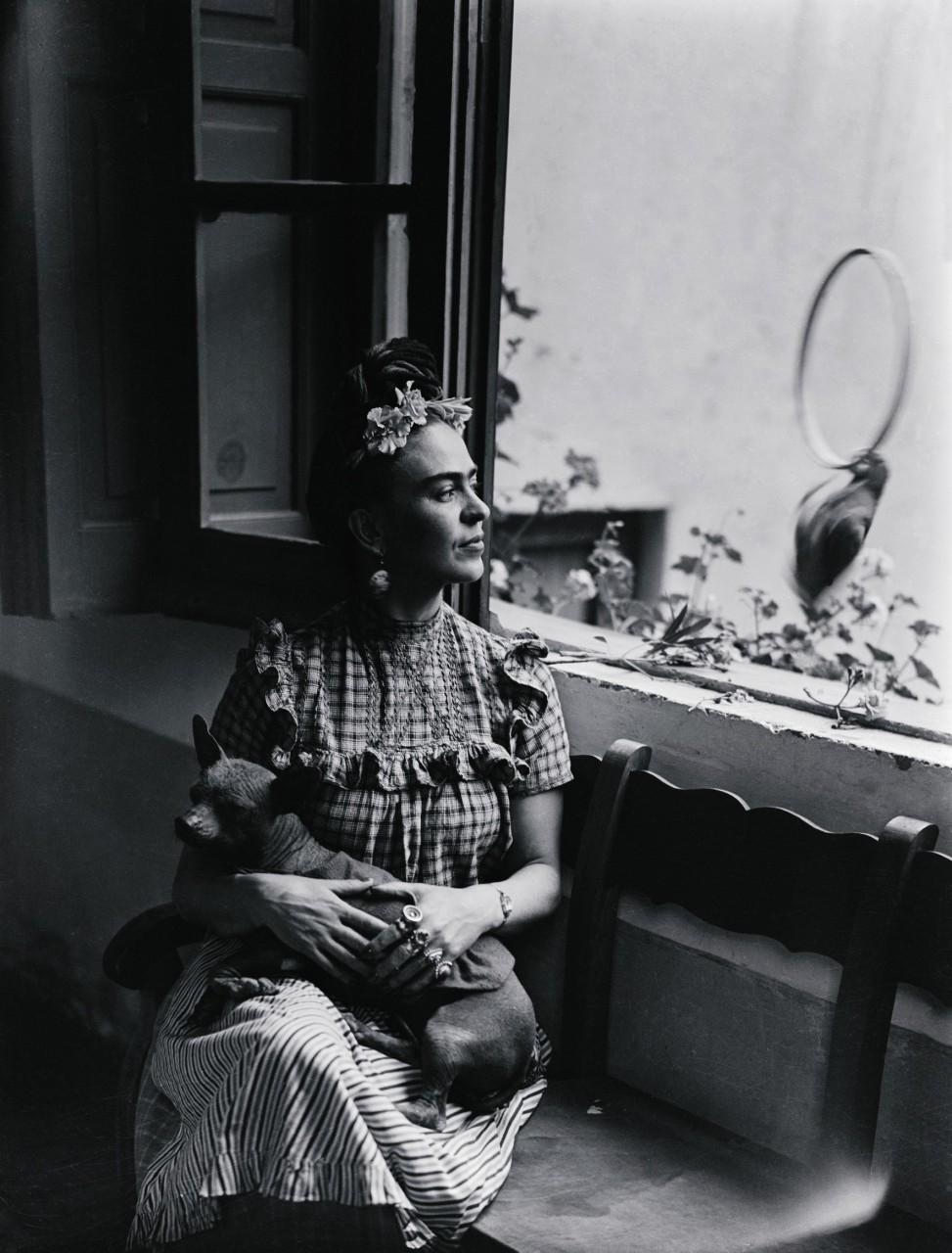 Интересные факты из жизни художницы Фриды Кало