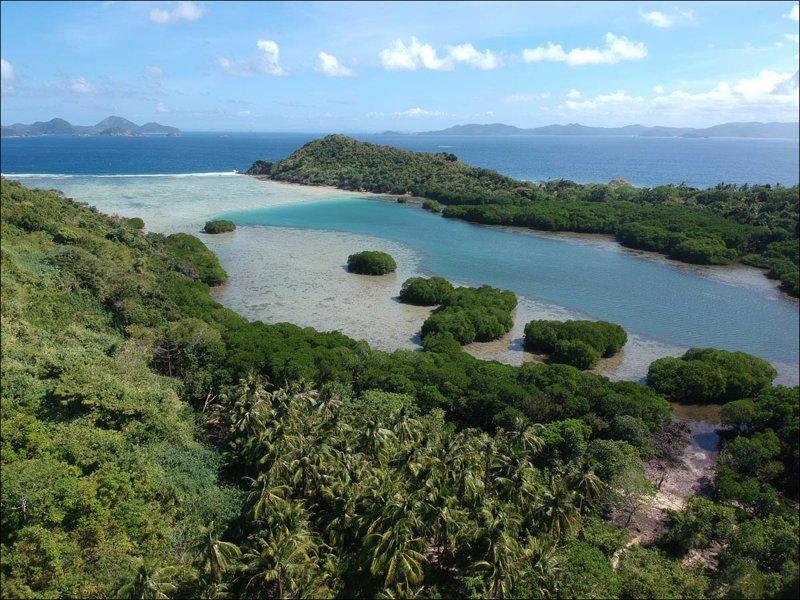 А вот здесь рыбаки прячутся от штормов: бухта внутри острова Калабанбаньянг покрыта манграми: Мангровый лес, в мире, земля, планета, природа, экология