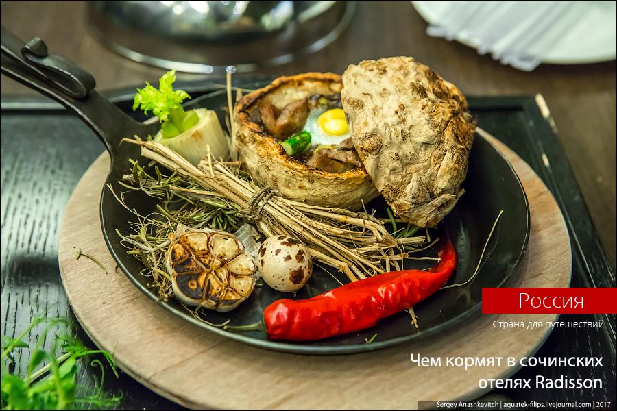 Чем кормят в сочинских отелях Radisson