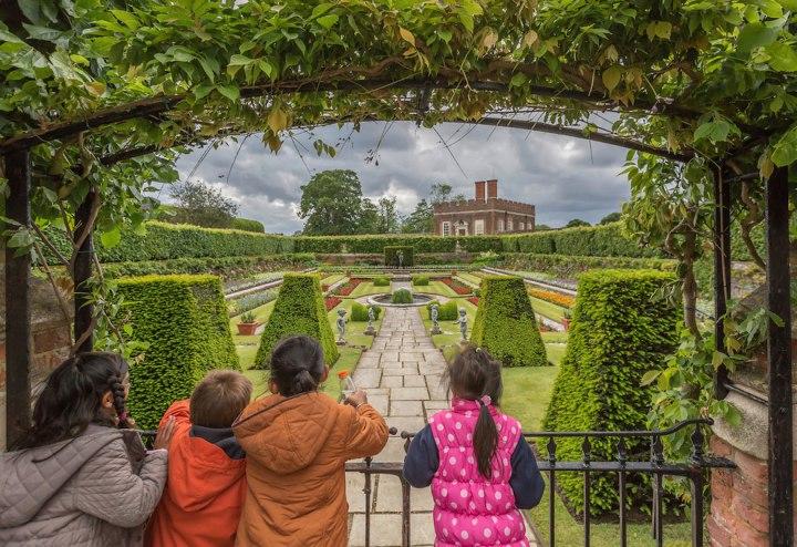 «Вид», Кристин Фитцжеральд Фотоконкурс Королевского садоводческого общества 2014 года