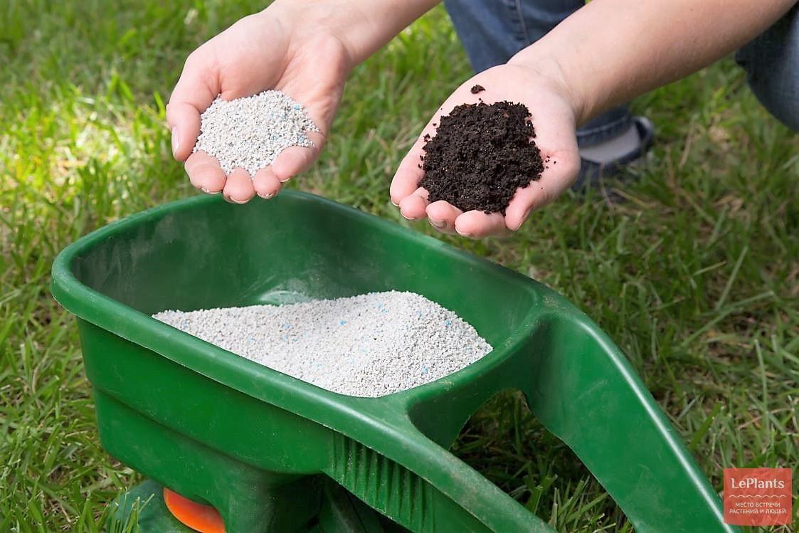 Каждому садоводу-огороднику на заметку: правила смешивания удобрений