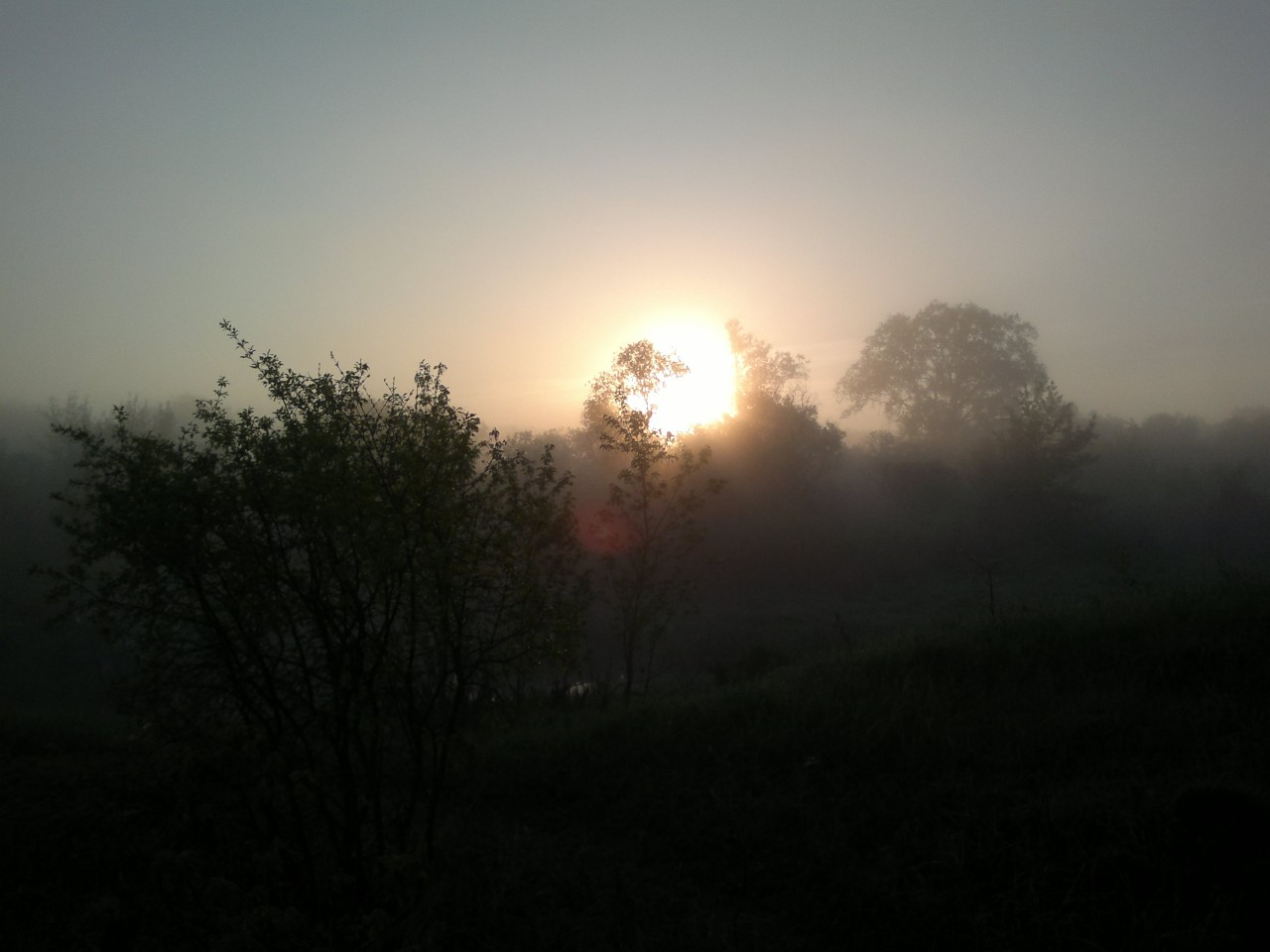 Мир вокруг нас: у природы нет плохой погоды