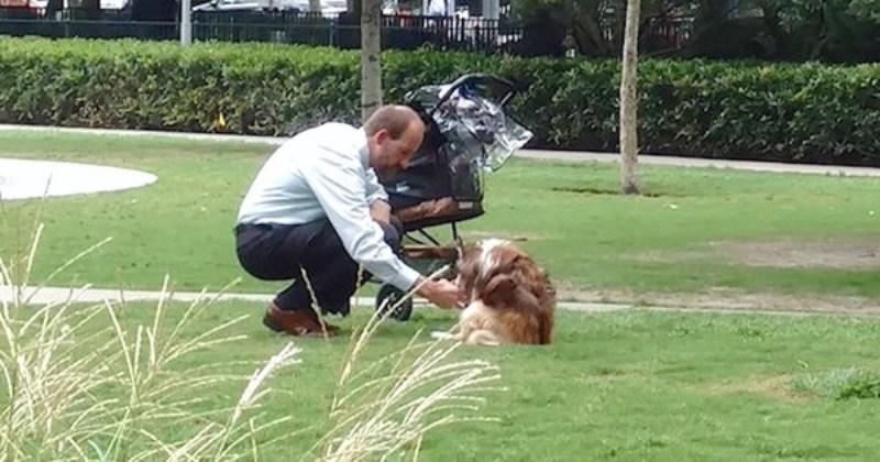 Фотография этого мужчины и его пса затронула сердца миллионов людей...