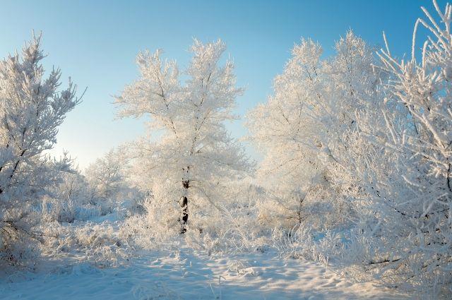В Москве стоят рекордные морозы