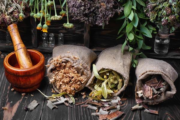 Как правильно сушить лекарственные травы