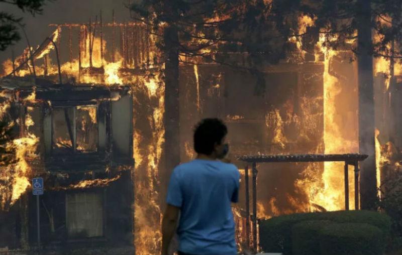 В Калифорнии горят виноградники: уничтожено полторы тысячи домов, есть погибшие