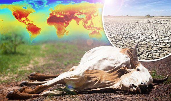 Климатический апокалипсис неизбежен