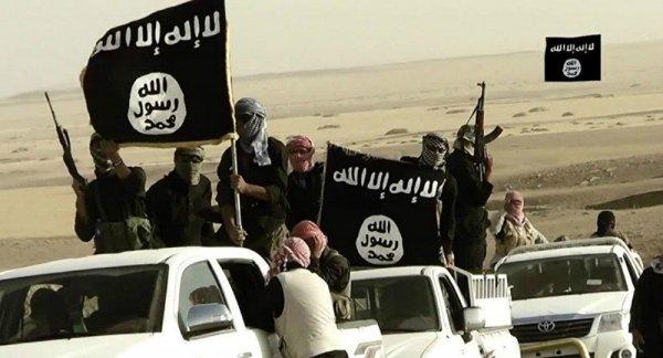 """Подполковник ВВС США о командирах ИГИЛ: """"Мы спасаем наших союзников"""""""