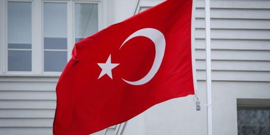 Турция призналась в введении ограничений на поставки российской сельхозпродукции