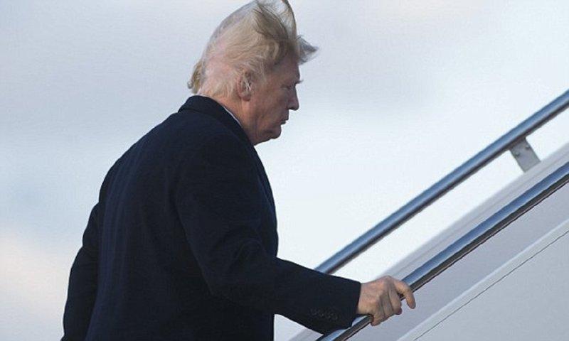 Носит ли Дональд Трамп парик?