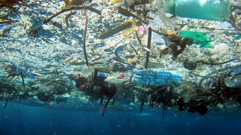 10 интригующих фактов об океанских глубинах, которых вы могли не знать интересное, мировой океан, океан, факты