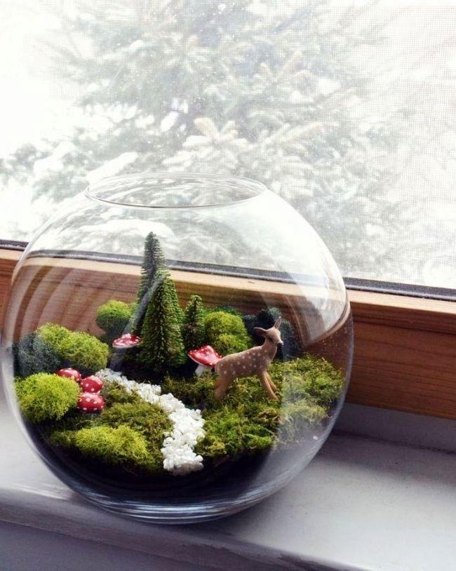 флорариум с мхом - уголок леса