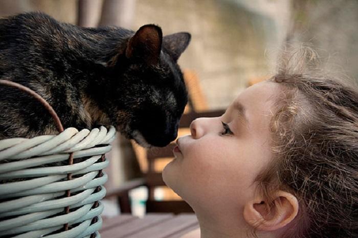 Интересные фото детей и кошек
