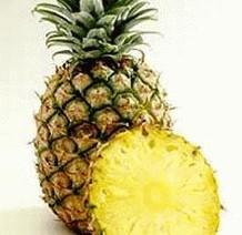 Ананас   Ananas comosus  Eng: Pineapple P.E. Lat: