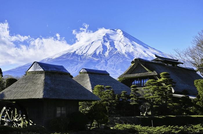 Гражданам Японии бесплатно раздадут дома