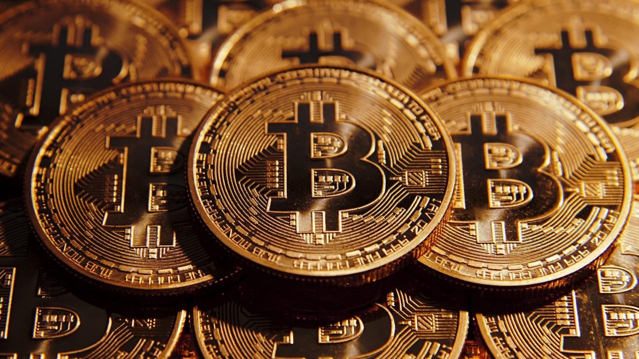Почему плодоносит криптовалютное поле чудес?