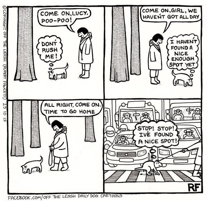 """10+ Hilarious Comics About Life With Dogs By """"Off The Leash"""""""