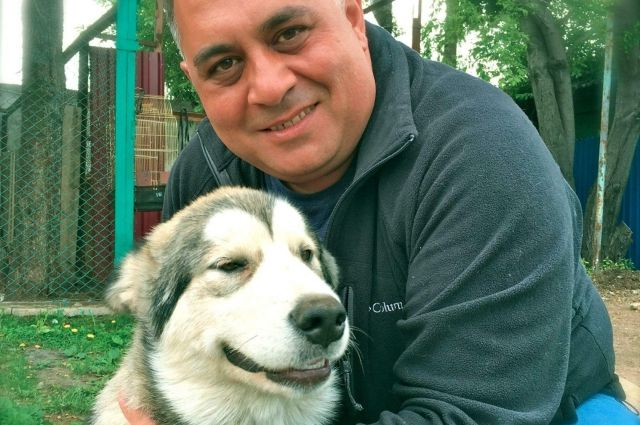 «Плюша спасла всех». В Челябинске собака заработала на оплату счетов
