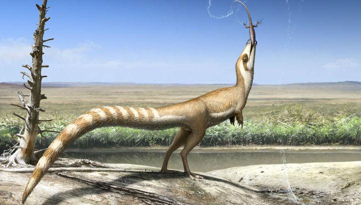 Динозавр прятался от крупных хищников при помощи «бандитской маски»