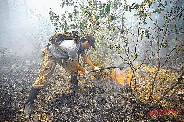 Глава РФ поручил обдумать идею привлечения граждан к тушению пожаров