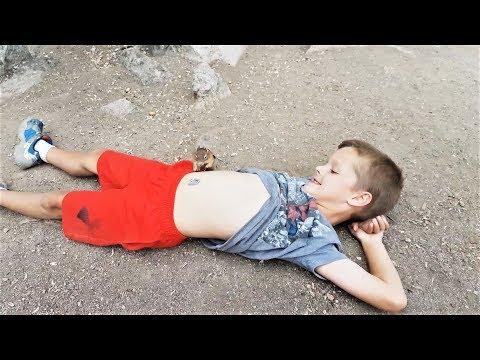 ПРИКОЛЫ 2017 Октябрь #158 Смешные и милые видео про животных Хомяки Грызуны Белки