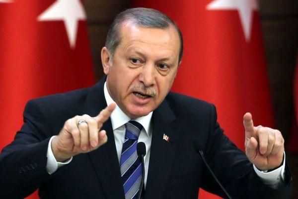 """Эрдоган призвал сограждан """"ответить внукам нацистов"""" на референдуме"""