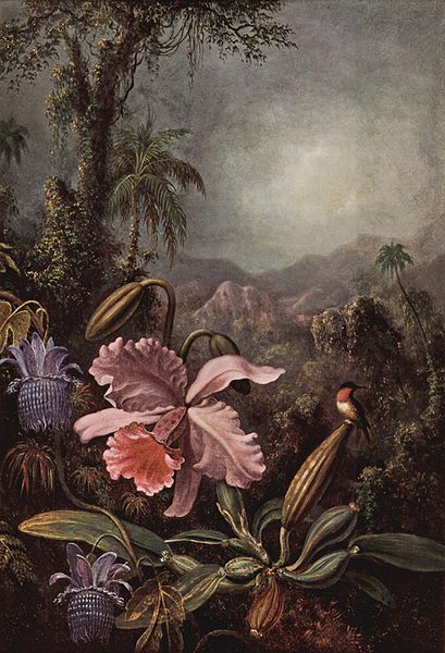 File:Martin Johnson Heade 001.jpg