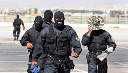 Виранском Курдестане вскрыта очередная «спящая ячейка» террористов