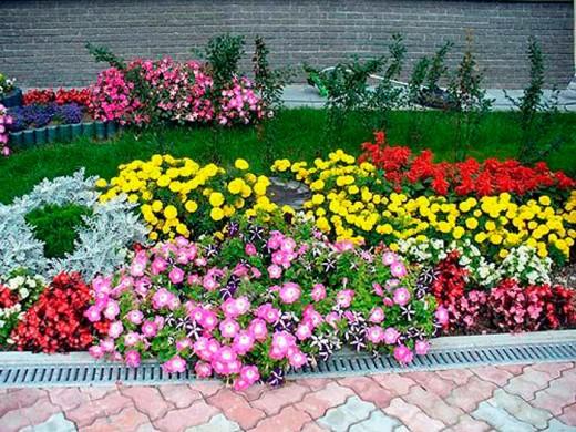 Идеальные условия : сама природа в помощь садоводу