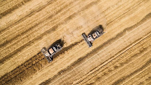 Financial Times признала наличие сельскохозяйственного бума в России