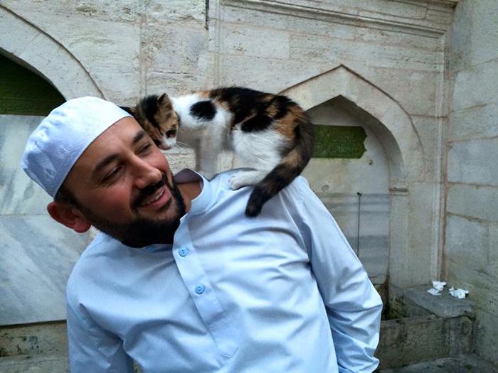 Имам открыл двери своей мечети для бездомных котиков, что бы помочь им согреться!