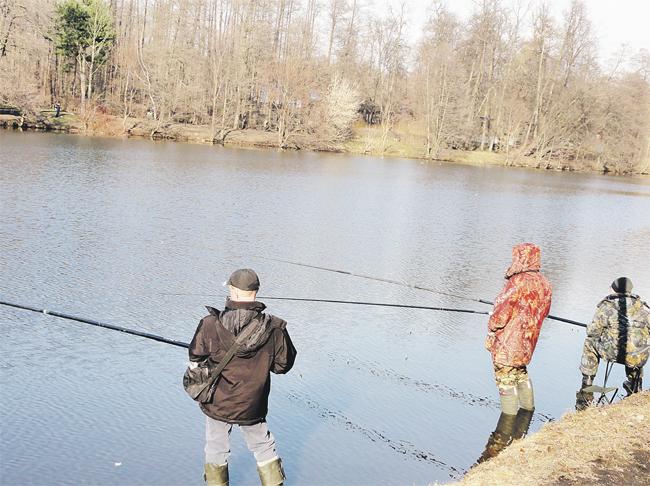 можно ли ловить рыбу на платных прудах