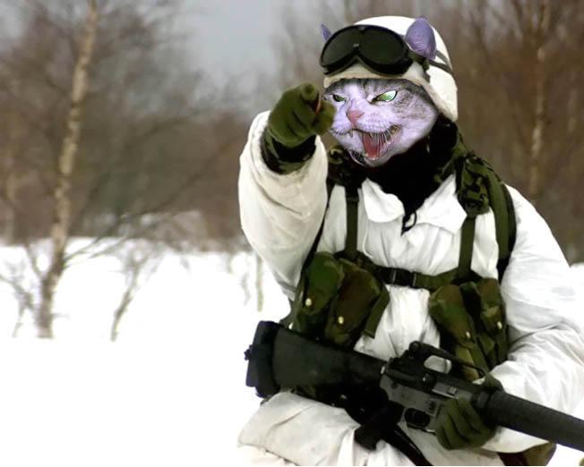 Два фрегата ВМФ РФ получили системы, вызывающие у противника галлюцинации