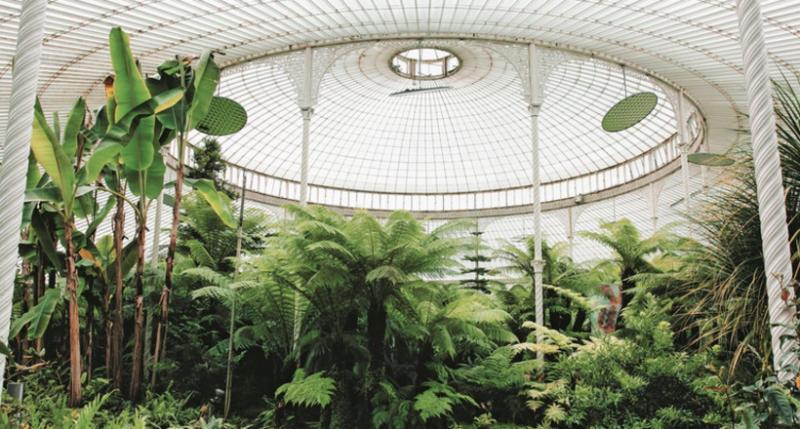 Британские фотографы показали самые впечатляющие оранжереи и теплицы мира