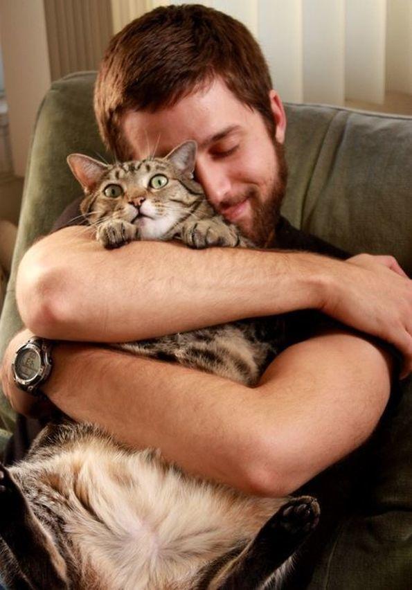 КОШАЧЬИ ПОЧЕМУЧКИ. Почему нельзя обнимать котов?