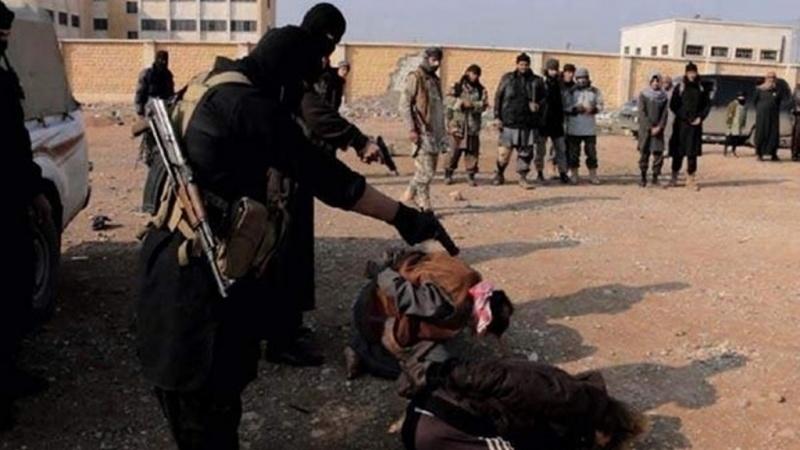 Идлиб: террористы становятся…