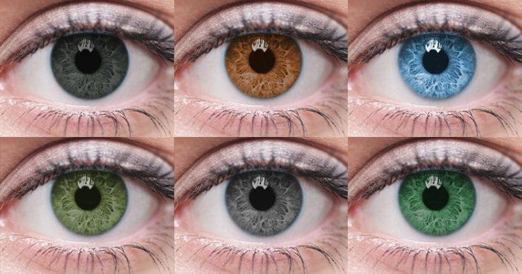 Цвет глаз женщины таит секрет, в каком сексуальном партнере она нуждается