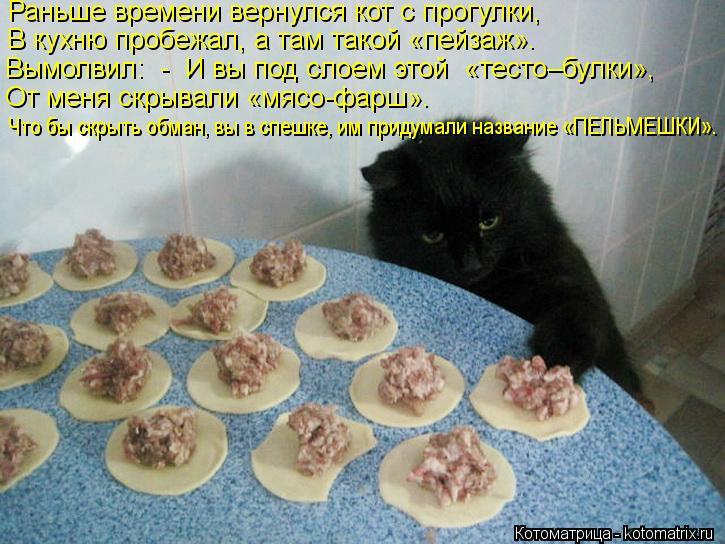 Котоматрица: Раньше времени вернулся кот с прогулки, В кухню пробежал, а там такой «пейзаж». Вымолвил:  -  И вы под слоем этой  «тесто–булки», От меня скрыв