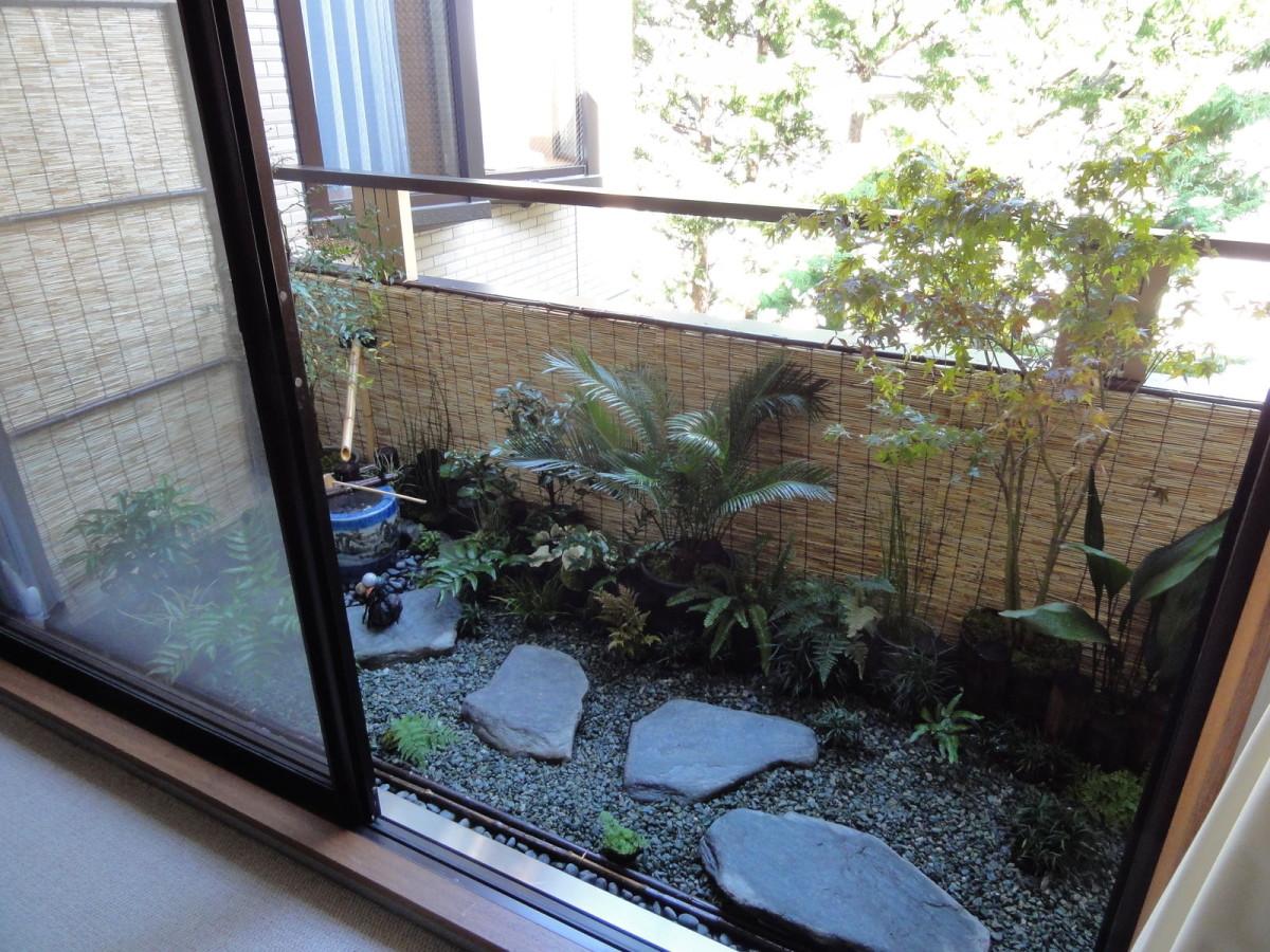 Растения на балконе