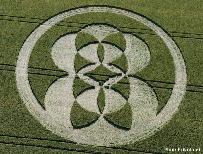 Круги на полях (76 фото)