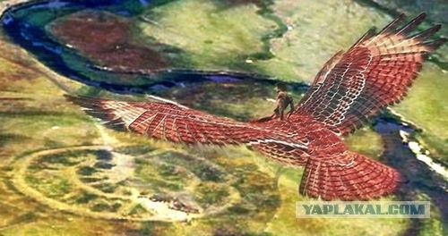 Вимана - летательный аппарат древних.