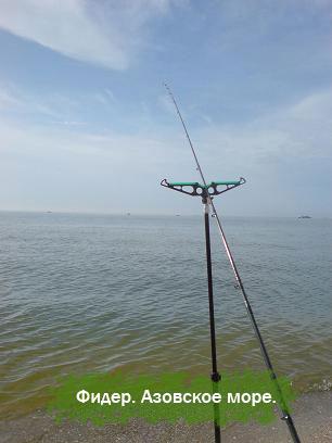 как ловить фидером на море